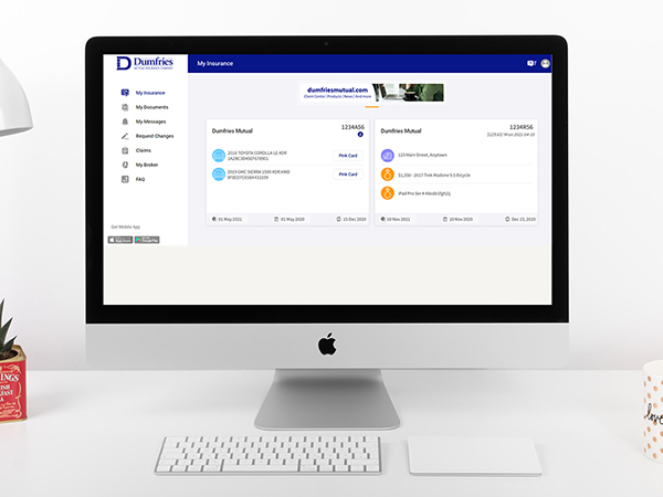 Dumfries Connect web portal WEB