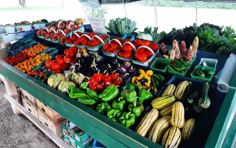fresh vegetables and fruits on a green farm stand   Top Local Destinations To Visit This Summer on The Dumfries Summer Trail