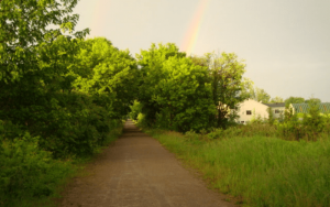 dirt road, green trees, rainbow in the background
