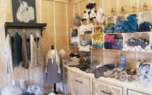 image of shop showing wool items like sweaters on hangers and yarn, slippers, and stuffed animals