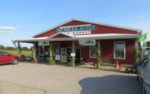 Shearlea Acres Farm Market picture of their red building from the parking lot with corn stalks on the posts   Top Local Destinations To Visit This Summer on The Dumfries Summer Trail
