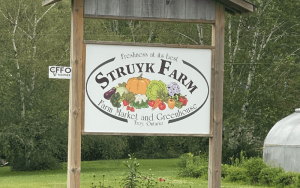 Struyk Farms sign from the road with trees in the background   Top Local Destinations To Visit This Summer on The Dumfries Summer Trail