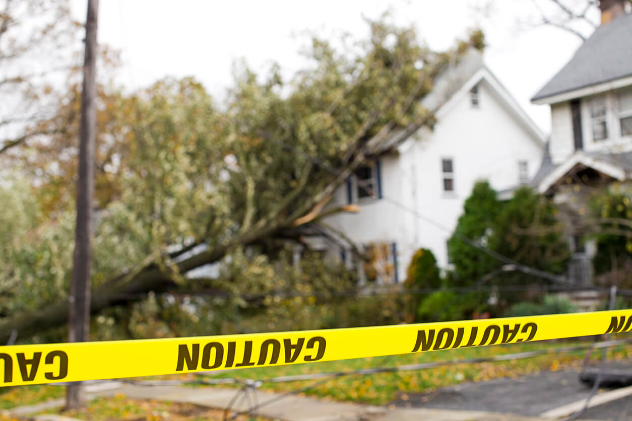 caution tape in front of a home with a large fallen tree